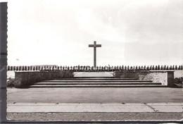 Schaffen  /  Monument Der Gevallen Parachutisten ( Groot Formaat ) - Diest