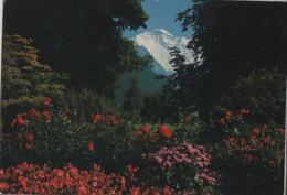 Schweiz - Interlaken - Jungfrau - 1982 - BE Berne