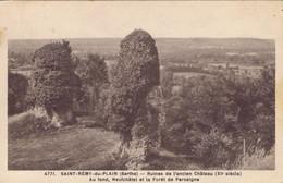 72 - Saint-Rémy-du-Val (-du-Plain) (Sarthe) - Ruines De L'Ancien Château - Au Fond, Neufchâtel Et La Forêt De Perseigne - Other Municipalities