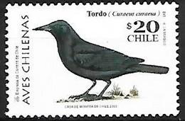 Chili - MNH ** 1998 :   Austral Blackbird  -  Curaeus Curaeus - Sperlingsvögel & Singvögel