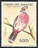 Paraguay - MNH ** 1969 :    White-tipped Plantcutter  -  Phytotoma Rutila - Sperlingsvögel & Singvögel