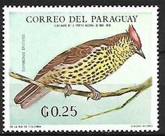 Paraguay - MNH ** 1969 :    Sharpbill  -  Oxyruncus Cristatus - Sperlingsvögel & Singvögel