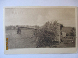 Tarnung WW 1 Artillerie Scheinbatterie, Unter-Elsaß IR 143 Feldpost 1917 (50629) - Weltkrieg 1914-18