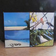 "Cpsm   AFRIQUE   SEYCHELLES   "" Birds Island"" - Seychelles"