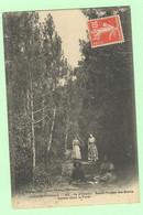 H1418 - ILE D'OLERON - Saint Trojan Les Bains - Sentier Dans La Forêt - Ile D'Oléron