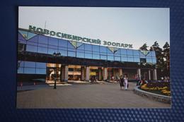 Novosibirsk ZOO .  Modern Russian  Postcard - Non Classificati