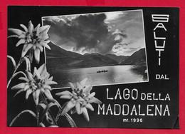 CARTOLINA VG ITALIA - Saluti Dal Lago Della Maddalena - 10 X 15 - 1954 - Gruss Aus.../ Grüsse Aus...