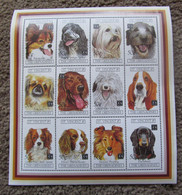 St. Vincent & The Grenadines 1994 Year Of The Dog Miniature M/S Sheet - St.Vincent E Grenadine