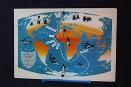 G-162 / Gronland,  Arjomari Du Pôle Nord Au Pôle Sud  -   La Veriane Buriat Du Pole Nord Au Pole Sud / 1958 - Greenland