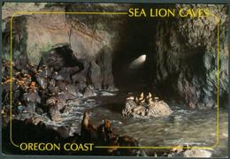 UNITED STATES - OREGON - SEA LION  CAVES  -  NEW - Sonstige