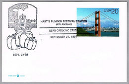 HART'S PUMPKIN FESTIVAL - TRACTOR - Calabazas. Bear Creek NC 1997 - Agriculture