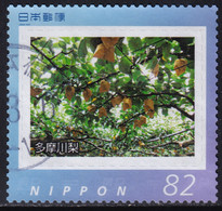Japan Personalized Stamp, Pear (jpv2648) Used - Used Stamps