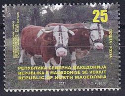 MACEDONIA NORTH 2021,DOMESTIC ANIMALS,WATER BUFFALO,FARM,,MNH - Granjas