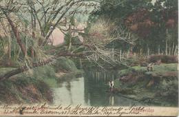 MONTEVIDEO (Uruguay) : Arroyo Miguelere - 1911. - Uruguay