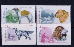 UMM 1966 Dogs - Albania