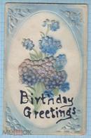 USA / Vintage Postcard /  Birthday Greetings. Flowers. Embossing. 1910th - Sonstige