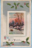 USA / Vintage Postcard / Happy New Year! Winter Landscape. Embossing. 1910 - Sonstige