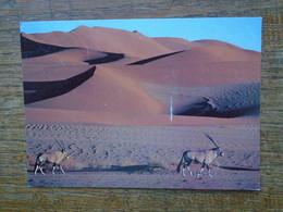 "Nanibia , Scénes Of Nanibia """" Beau Timbre Et Cachet """" - Namibia"