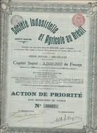 SOCIETE INDUSTRIELLE ET AGRICOLE AU BRESIL - ACTION DE PRIORITE - ANNEE 1906 - Agriculture