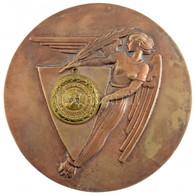 """Boldogfai Farkas Sándor (1907-1970) 1927. """"A Magyar Nemzeti Bank Alkalmazottainak Sportegyesülete"""" Kétoldalas Br Emlékér - Unclassified"""
