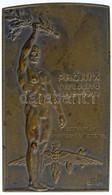 """Sződy Szilárd (1878-1939) 1932. """"Phönix Biztosító 1882-1932 - A Tisztviselők Sportegyesületétől"""" Egyoldalas Br Plakett ( - Unclassified"""
