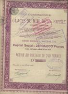 COMPAGNIE DES GLACES DU MIDI DE LA RUSSIE-ACTION DE 250 FRS .- ANNEE 1929 - Russia