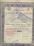 COMPAGNIE DES GLACES DU MIDI DE LA RUSSIE-ACTION DE 250 FRS .- ANNEE 1919 - Russia