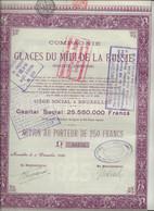 COMPAGNIE DES GLACES DU MIDI DE LA RUSSIE-ACTION DE 250 FRS .- ANNEE 1925 - Russia