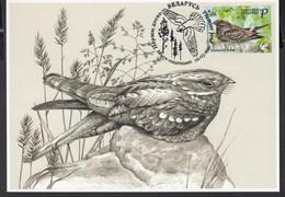 Belarus Weissrussland MNH** 2021  Mi  1401 Bird Of The Year. European Nightjar Max CARD - Bielorrusia