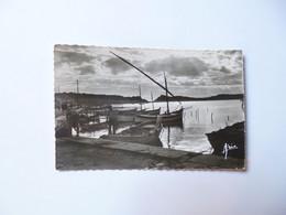 écrite De LA CIOTAT  -  13  -  Petit Port De Pêche  -  Bouches Du Rhône - La Ciotat