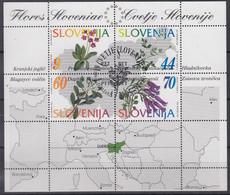 SLOWENIEN Block 1, Gestempelt, Einheimische Pflanzen, 1994 - Slovenia