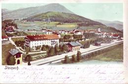 4 Schöne  ALTE  AK  STEINACH Am Brenner / Trentino / Südtirol / Italien - Verschiedene Ansichten  - 1898 Bis 1910 Ca. - Autres Villes
