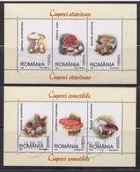 ROMANIA: MUSHROOMS, 2 Used Souvenir Blocks - Registered Shipping! Envoi Enregistre! - Usati