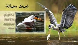 Liberia 2020  Fauna Water Birds    S202102 - Liberia