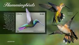 Liberia 2020  Fauna Hummingbirds    S202102 - Liberia