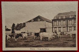 CPA  Fleurus -  Ferme Du Château - Fleurus