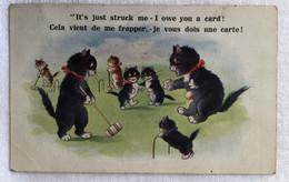 «COMIQUE»Séries Humour Illustrateur -chats-684 - Humor