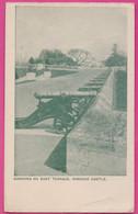 PC12432 Cannons On The East Terrace, Windsor Castle, Berkshire, England - Windsor Castle