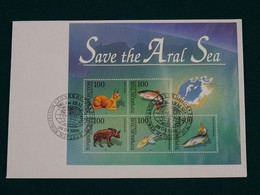 Tajikistan 1996 Joint Issue Save The Aral Sea FDC VF - Tajikistan