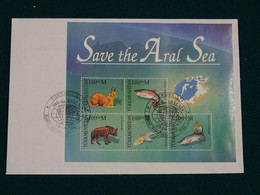 Turkmenistan 1996 Joint Issue Save The Aral Sea FDC VF - Turkmenistan