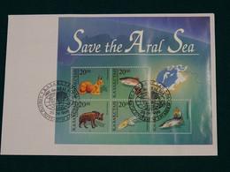 Kazakhstan 1996 Joint Issue Save The Aral Sea FDC VF - Kazakhstan