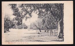 CPA Uruguay - Montévidéo - Paseo De El Prado - 1900 - Uruguay