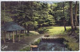 """72 - Jupilles - Forêt De Bercé (Sarthe) - Les Sources De L'Hermitière"""" - Andere Gemeenten"""