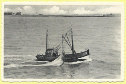 2631 - BELGIE - BELGIUM - ZEEBRUGGE - TERUG VAN VISVANGST - RETOUR DE PECHE - BACK FROM FISHING - FISHING BOAT - Z496 - Zeebrugge