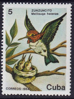 CUBA - Faune, Oiseaux - MNH - 1984 - Unclassified