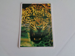 Leopardo Portugal Portuguese Pocket Calendar 1996 - Small : 1991-00