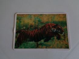 Tigre De Benguela Portugal Portuguese Pocket Calendar 1996 - Small : 1991-00