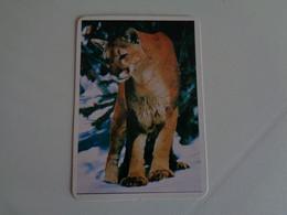 Puma Portugal Portuguese Pocket Calendar 1996 - Small : 1991-00