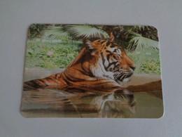 Tigre Portugal Portuguese Pocket Calendar 2000 - Small : 1991-00