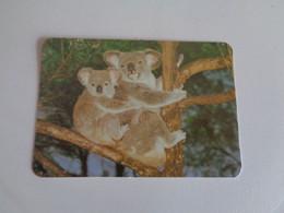 Koala Portugal Portuguese Pocket Calendar 2000 - Small : 1991-00